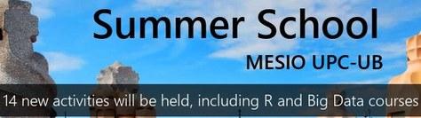 XII Summer School in Statistics (MESIO UPC-UB)